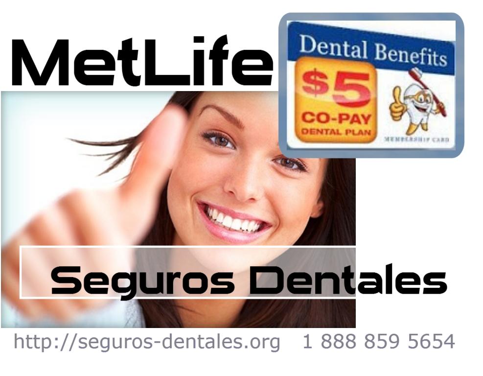 Informacion de seguro dental metlife